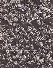 Karl Blossfeldt - Wunder In Der Natur 1942 Gravure - Arenaria Tetraquetra #58