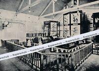 Nauen - Kraftzentrale - Telefunkenstation - um 1915      H 23-12