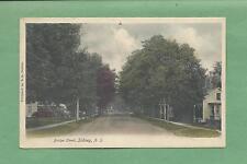 BRIDGE STREET In SIDNEY, NY On Vintage 100-Year Old Unused Postcard