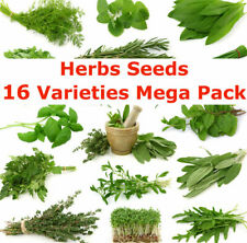 Herbs Seeds 16 Varieties Mega Seeds Packs Registered AusPost Delivery
