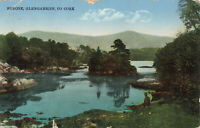 Rare Vintage Postcard Serone, Glengarriff, Co. Cork, Ireland (Aug 1932).
