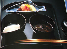 CHADO Japanese Tea Ceremony Chanoyu Self Study Book Tsujitome Cha-Kaiseki FURO