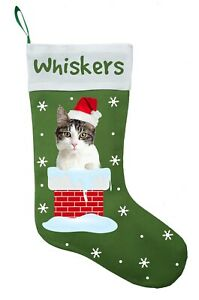 Domestic Shorthair Cat Christmas Stocking, Domestic Shorthair Cat Stocking