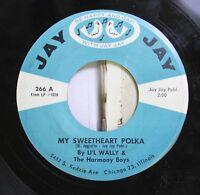 Polka 45 Li'L Wally And The Harmony Boys - My Sweetheart Polka / Aye, Aye, Aye,