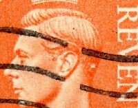 1950 Sg 503 ½d Pale Orange White Dot in Hair behind The King's Ear Fine Used