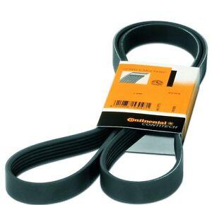 Conti V-Ribbed Belt Alfa-Fiat-Ford-Mazda-Peugeot-Opel- for Toyota 1.8-2.0-2.5