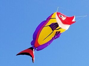 17 ft Hot Fish Yellow from Funwithwind - 21-3210Y