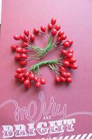 CHRISTMAS RED BERRIES Pk - 24 Pairs Berries = 48 Single Berries