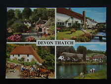 DEVON THATCH COCKINGTON FORGE CROYDE VILLAGE ROSE COTTAGE BICKLEIGH EXE POSTCARD