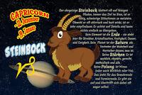 Sternzeichen Steinbock Capricorn Blechschild Schild gewölbt Tin Sign 20 x 30 cm