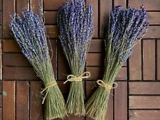 Fragrant Dried Lavender/1 Bunch |150-200 stems| DIY Home Decor | Wedding Floral