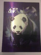 3D PICTURE POSTER PANDA BEARS PLASTIC IMAGE