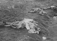 WWII photo Japanese soldiers killed by American artillery fire on Iwo Jima 2