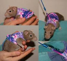 The cutest Rat Harness with Lead  (also available in Ferret size)