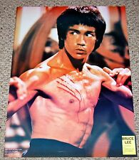 BRUCE LEE Enter The Dragon Chest Scratches 1977 Poster Nunchucks Martial Arts