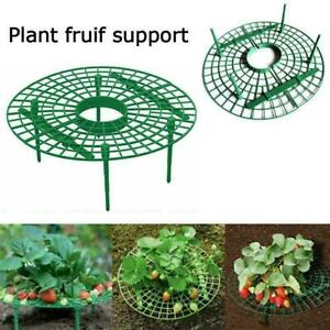 1/5/10 PC Stand Strawberry Frame Balcony Planting Holder Rack Fruit Support Plan