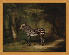 Zebra George Stubbs Tiere Wald Bäume Streifen Pferde Lichtung B A2 02029