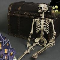 Posable Skeleton Halloween Decor Scary Man Bone Creepy Prop Party Decorat Gift