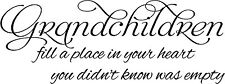 GRANDCHILDREN FILL A PLACE IN YOUR HEART  Vinyl Wall Decal Lettering Words Quote
