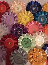 10 X Trophy Themed Rosettes