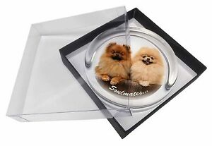 Pomeranian Dogs 'Soulmates' Sentiment Glass Paperweight in Gift Box C, SOUL-45PW
