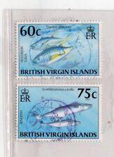 Islas Virgenes Fauna Marina Peces año 1996 (DN-695)