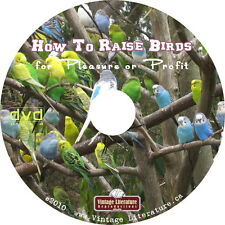 How To Raise Birds & Pigeons ~ Vintage Books on DVD