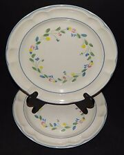 Floral Expressions 2 Mexican Hand Decorated Stoneware Dinner Plates