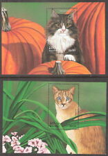 Maldives 1998 Cats Snowshoe Norwegian Souvenir Sheets Mnh (Sc# 2311-2312)
