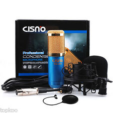 Condenser Blue Microphone Mic Professional Studio with Shock Mount + Pop Filter