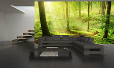 Morning in Forest  Wall Mural Photo Wallpaper GIANT WALL DECOR PAPER POSTER