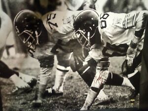 """STEELERS SIGNED 16 X 20 LC GREENWOOD """"RARE"""""""