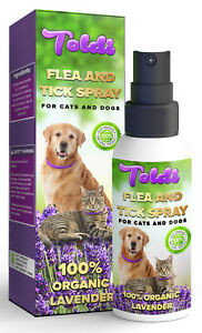 Flea Spray, Flea Treatment Cat & Dogs, Fleas Protection Spray Natural Ingredient