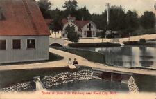 Tinted Postcard Scene at the State Fish Hatchery near Reed City, Michigan~118437