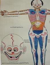 Buddha:Toller tibet. MEDIZIN THANGKA no. 7 Anatomie