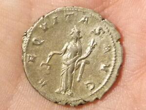 Roman Gordian III 238-44 AR Antoninianus Silver Coin S2427 AEQVITAS AVG #EE4