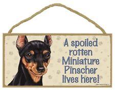 "A Spoiled Rotten Miniature Pinscher lives here! Dog Sign 5""x10"" Wood Plaque 149"