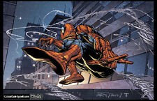 Dan Prado- PradoInkworks Signed Spider-Man swinging Full Color Print