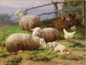 EVENING REST Vintage SHEEP Lamb FARM CANVAS ART - LARGE