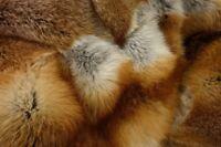 HUGE LOVELY SOFT REAL FIREY GOLDEN RED FOX FUR THROW / BLANKET - 170x130cm