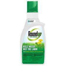 Roundup for Lawns - 1 Qt.