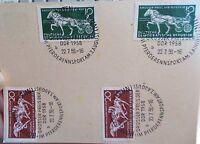 Pk DDR mit SST: Grosser Preis der DDR 22.7.1958  Pferderennsport