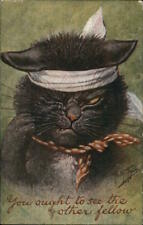 Cats 1908 Arthur Thiele You Ought To See The Other Fellow Postcard 1c stamp