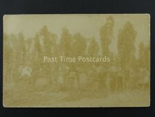 English HOP PICKING / PICKERS Field Portrait (6) Early RP Postcard