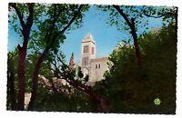Algérie - cpsm - BOUGIE - La mosquée de Sidi Soufi  (i 9758)