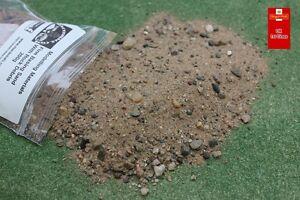 Basing Sand Fine With Rock Debris 200g Scenery Dioramas Terrain - Kiln Dried