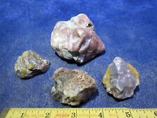 DINOSAUR COPROLITE - GEM QUALITY - HIGHLY POLISHED JURASSIC POO! - 1# PACKAGES