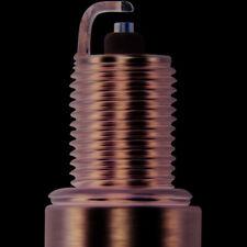 Spark Plug-Double Platinum Power Champion Spark Plug 7031