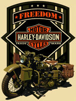 Freedom on a Green Motorcycle Harley Davidson Metal Sign