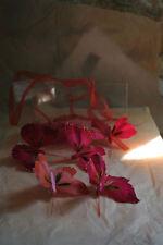 Boîte de 12 petits Papillons colorés sur pince [425568] decoration de table